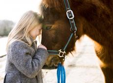 Meisje knuffelt paard